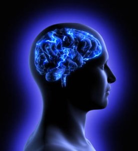 brain empathy